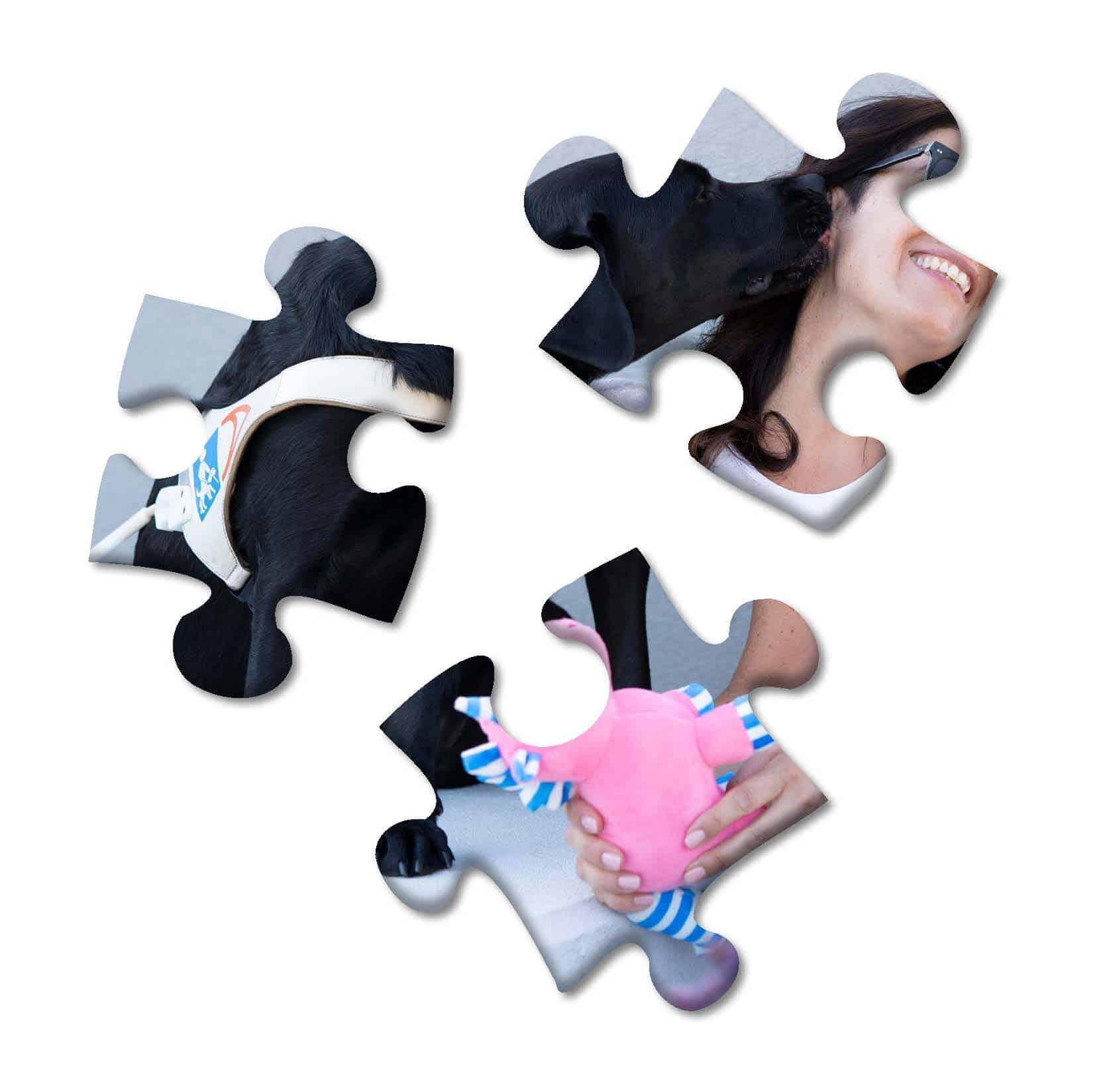 Barbara Veccia puzzle